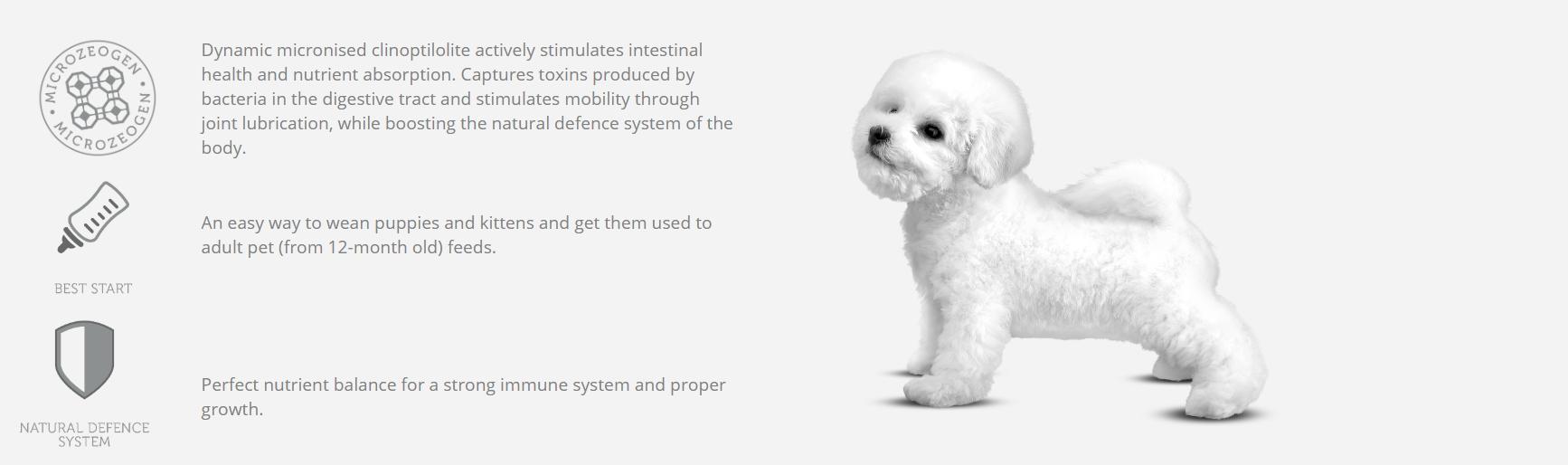 NP_Puppy_Starter_Mousse_Chicken_Puppy