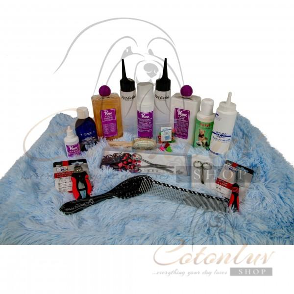 Cotonluv Set CPH Puppy Starter incl. Mason Pearson BN Pocket for only 58EUR