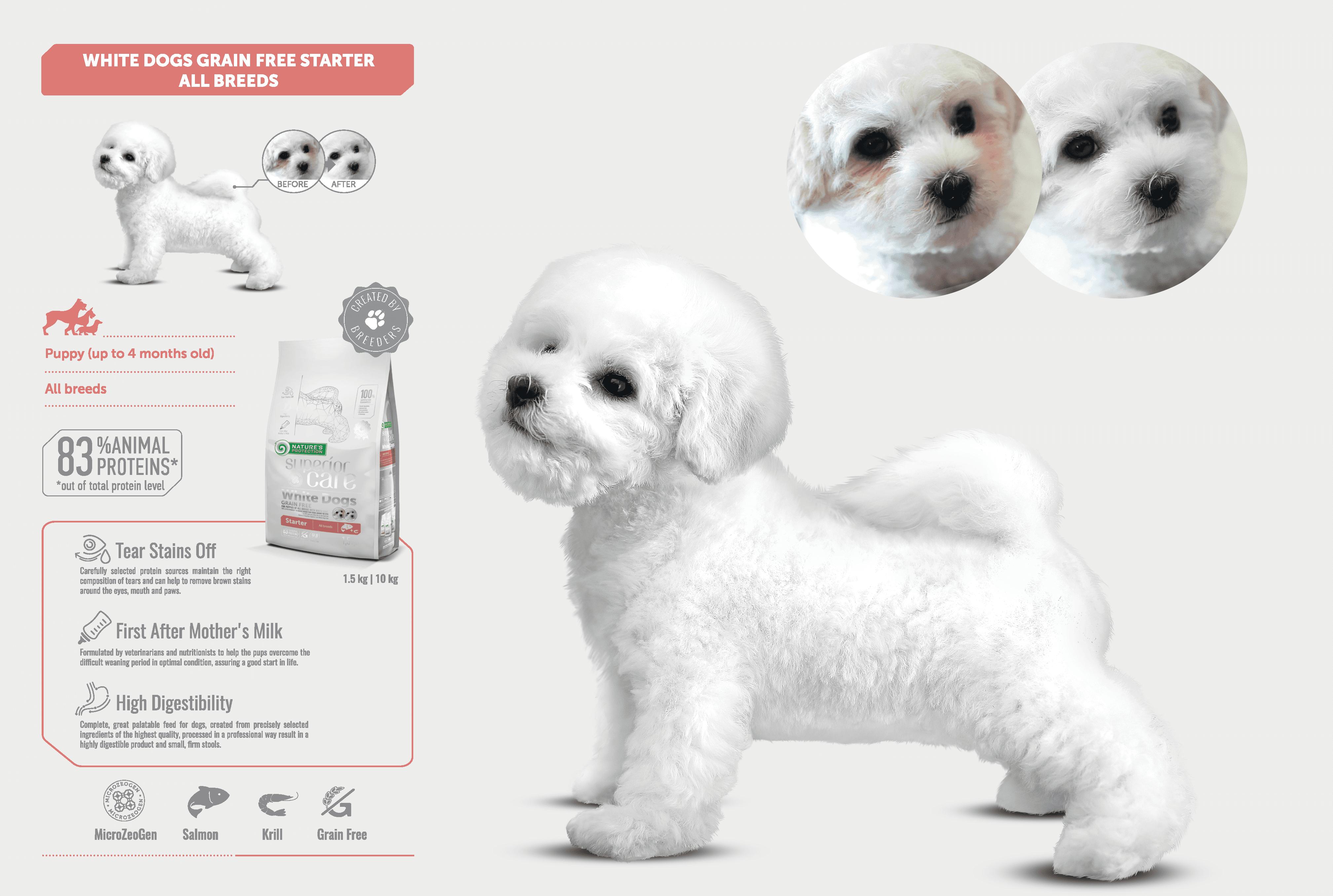 NP-SC-brochure-2019-All-EN_Puppies